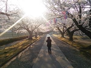 堂ノ前公園